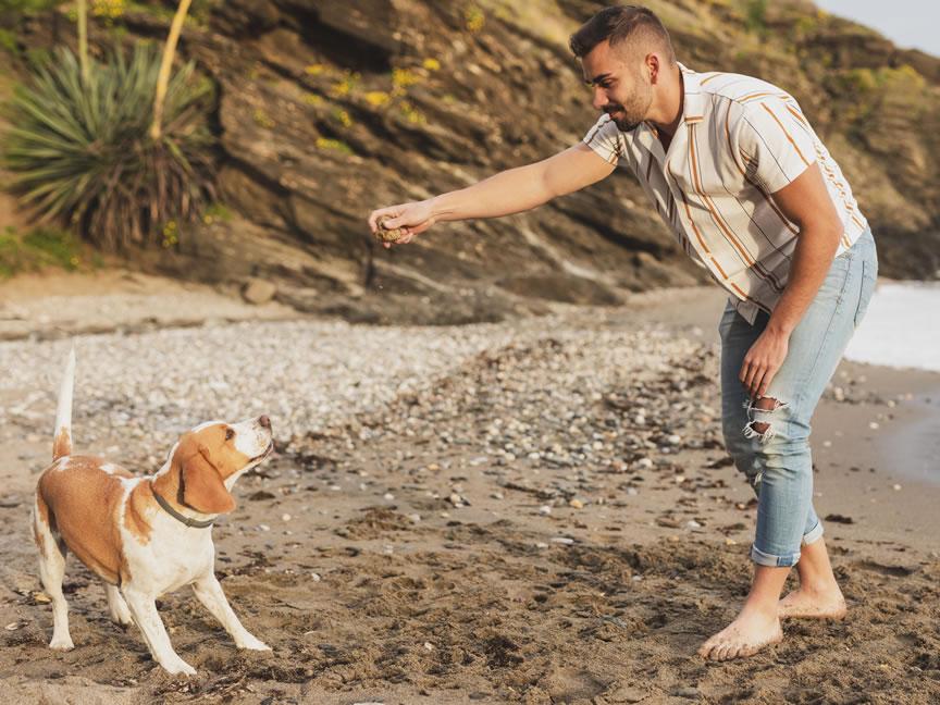 Nodes 25 - Viajes en autocaravana y playas caninas